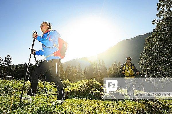 Wanderer bei Reit im Winkl,  Chiemgau,  Oberbayern,  Deutschland,  Europa