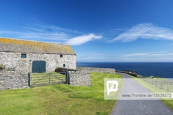 Hofsiedelung an der Nordseeküste bei Dunbeath  Grafschaft Caithness  Schottland  Großbritannien  Europa