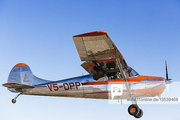 Cessna 170 im Flug  Seitenansicht  Region Erongo  Namibia  Afrika