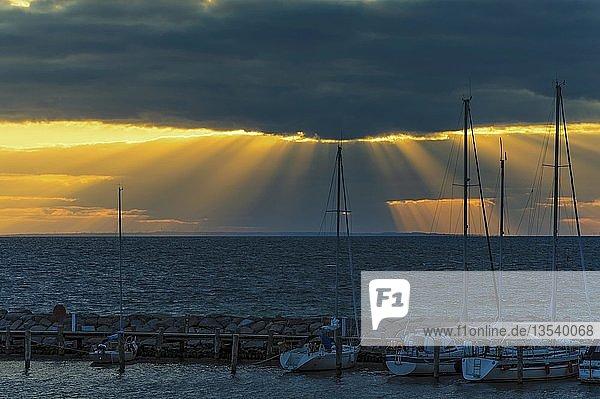 Segelyachten in der Abenddämmerung im Hafen von Timmendorf  Insel Poel  Mecklenburg-Vorpommern  Deutschland  Europa