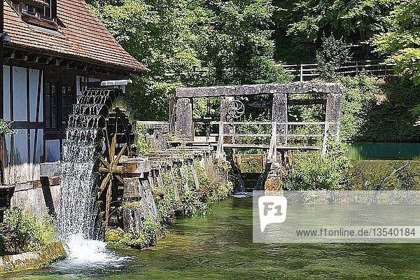 Historisches Hammerwerk am Blautopf  Karstquelle  Wasserrad  Stellwerk  Blaubeuren  Alb-Donau-Kreis  Schwäbische Alb  Baden Württemberg  Deutschland  Europa