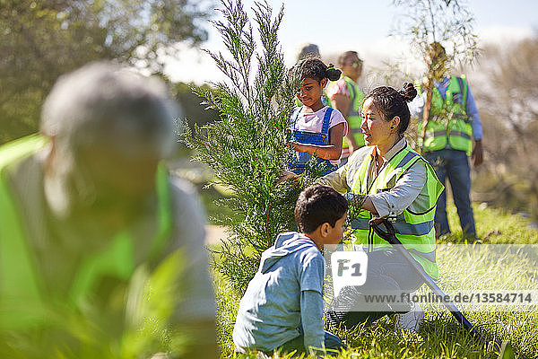 Woman and children volunteers planting tree in sunny park