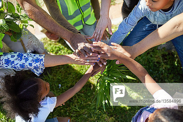 Volunteers joining hands  planting trees in park
