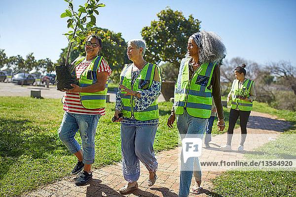 Female volunteers planting tree in sunny park