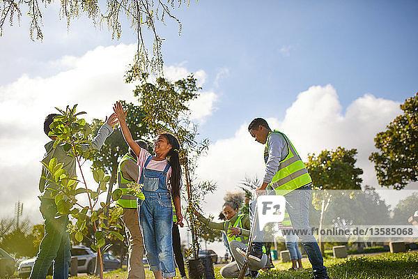 Kid volunteers high-fiving  planting trees in sunny park