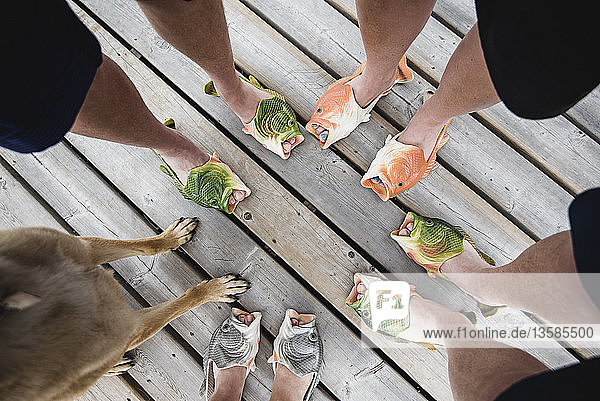 View from above friends wearing humorous fish slippers on dock