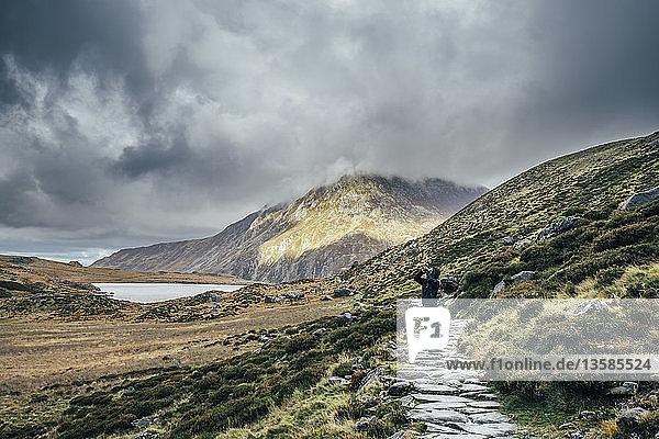 Man on stone path among remote  tranquil landscape  Snowdonia NP  UK