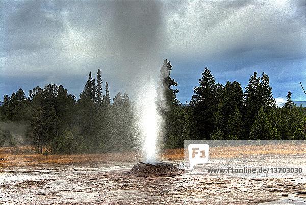 Amerika,Gewässer,Geysir,Heiße Quelle,Landschaft,Montana USA