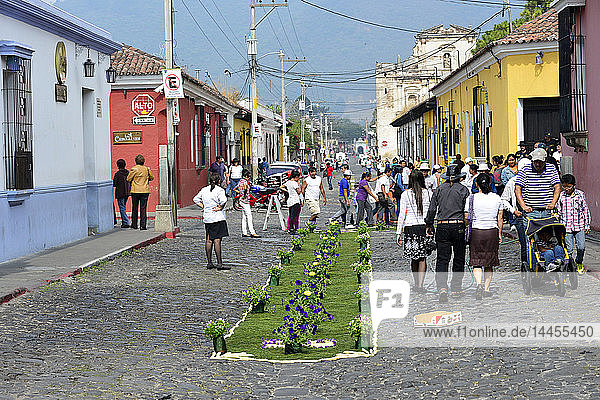 Traditional Flower carpet made for Holy week  Antigua  Guatemala  Central America.