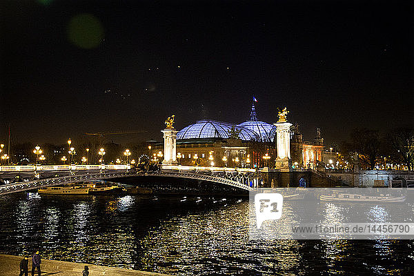 Night view of the Grand Palais  the Illuminated Dome and the Illuminated Alexandre III Bridge on the other bank of the Seine in Paris  France.