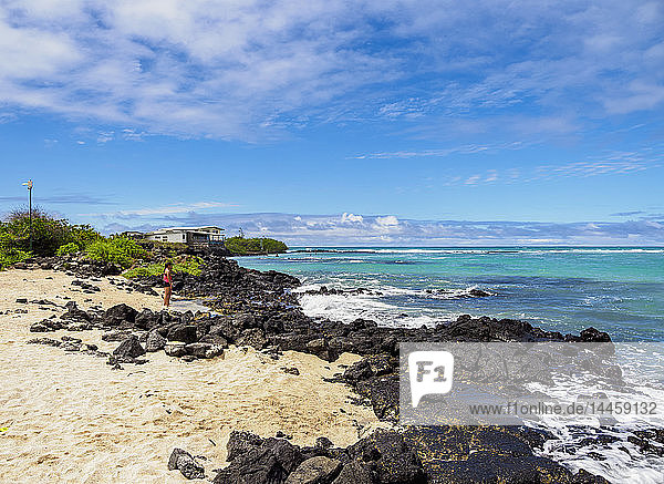 Charles Darwin Station Beach  Playa de la Estacion  Puerto Ayora  Santa Cruz (Indefatigable) Island  Galapagos  UNESCO World Heritage Site  Ecuador  South America