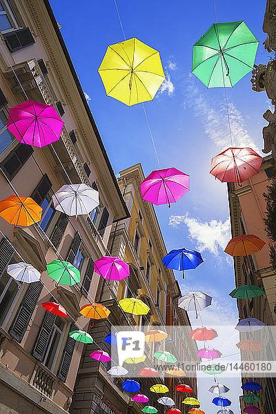 Brightly coloured floating umbrellas,  Genoa,  Liguria,  Italy