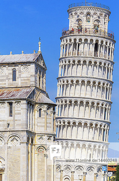 Leaning Tower  Campo dei Miracoli  UNESCO World Heritage Site  Pisa  Tuscany  Italy