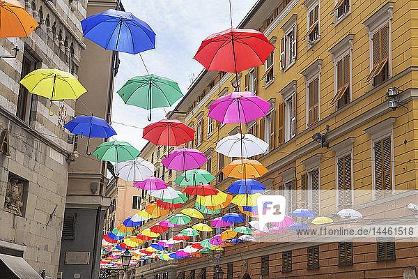 Brightly coloured floating umbrellas  Genoa  Liguria  Italy