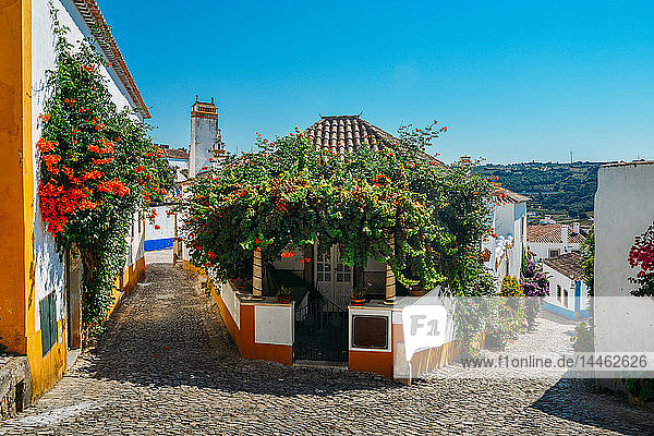 Narrow quaint streets within the ancient fortified village of Obidos  Oeste  Leiria District  Portugal