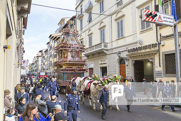 An ornate Ox cart for the Explosion of the Cart festival (Scoppio del Carro) where on Easter Sunday a cart of pyrotechnics is lit  Florence  Tuscany  Italy