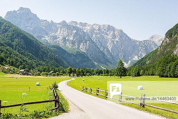 Alpine valley of Logarska Dolina  Slovenia
