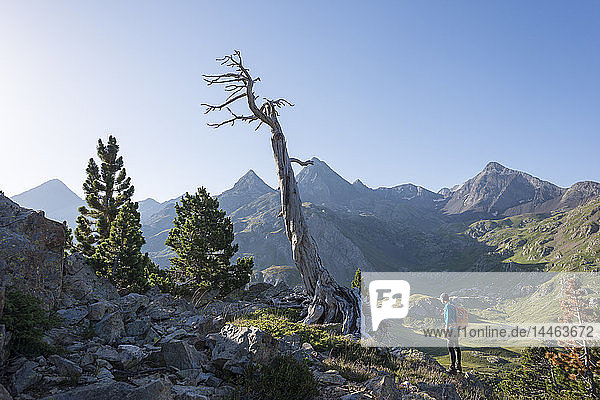 A walker takes in a view of the Pyrenees from near Refugio Respomuso along the GR11 long distance trekking path  Huesca  Spain