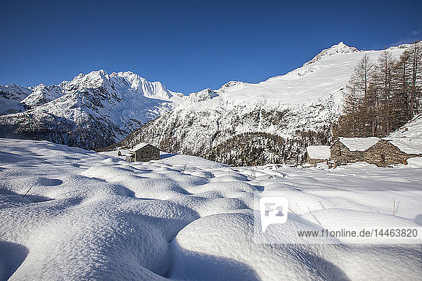 Huts in the snow with Monte Disgrazia on background  Alpe dell'Oro  Valmalenco  Valtellina  Sondrio province  Lombardy  Italy