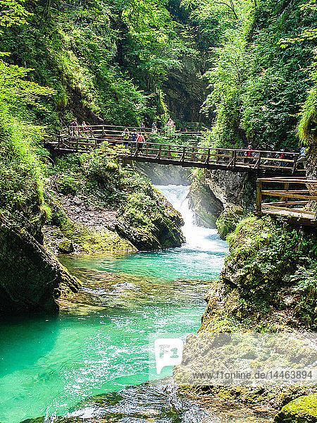 Radovna River flowing through Vintgar Gorge  near Bled  Slovenia