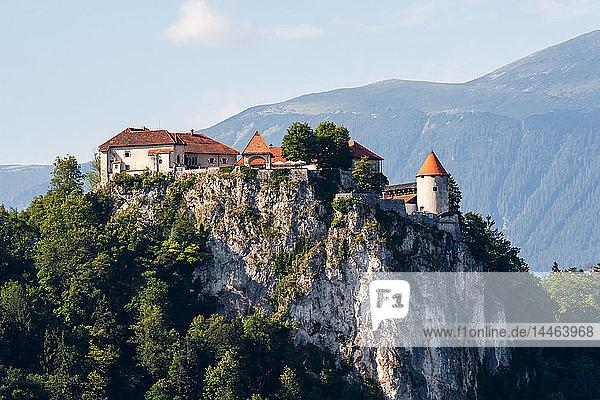 Bled Castle  Lake Bled  Slovenia