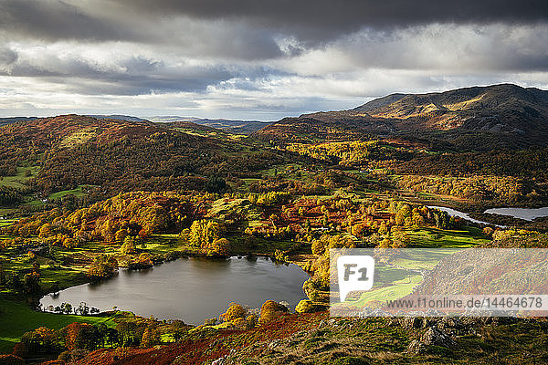 View on autumn dawn from Loughrigg Fell  Lake District National Park  UNESCO World Heritage Site  Cumbria  England  United Kingdom