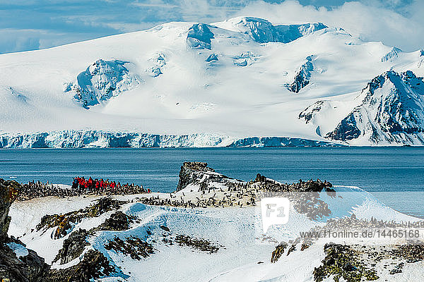 Scenic view of Antarctica  Chinstrap Penguins and people roaming around the ice  Antarctica  Polar Regions