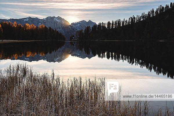 Autumn sunrise at Lake Malghette  Val Rendena  Trentino-Alto Adige  Italy