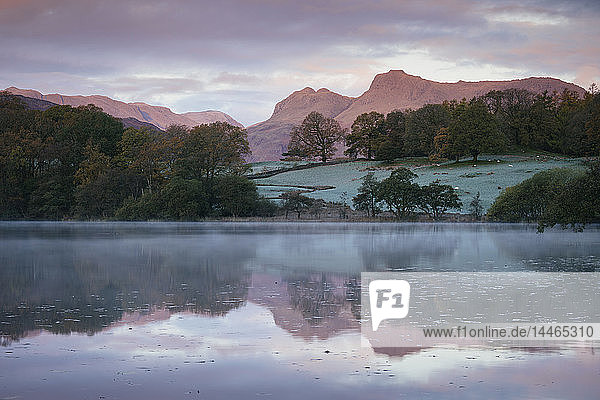 Langdale Pikes at dawn from Loughrigg Tarn  Lake District National Park  UNESCO World Heritage Site  Cumbria  England  United Kingdom