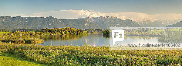 View over Riegsee Lake to Zugspitze and Wettersteingebirge Mountains  Upper Bavaria  Bavaria  Germany  Europe