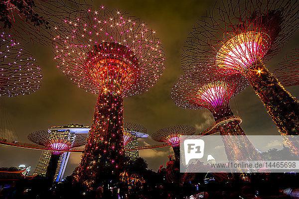 Singapore  Marina Bay  Gardens by the Bay  Super trees at night
