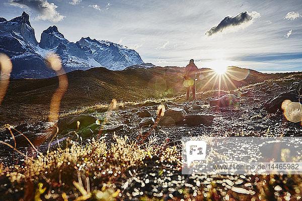 Chile  Torres del Paine Nationalpark  Mann steht bei Sonnenaufgang vor dem Torres del Paine Massiv