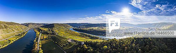 Deutschland,  Rheinland-Pfalz,  Weinberge und Marienburg bei Puenderich,  Mosel