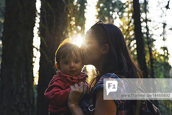USA  California  Sequoia National Park  woman kissing her little daughter at sunset