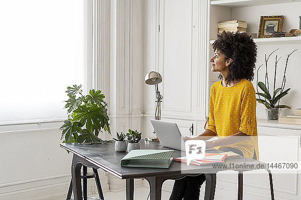 Frau sitzt am Schreibtisch  arbeitet  benutzt Laptop