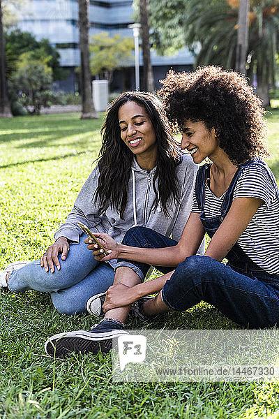 Freundinnen  die im Park sitzen  Spaß haben  Smartphone benutzen