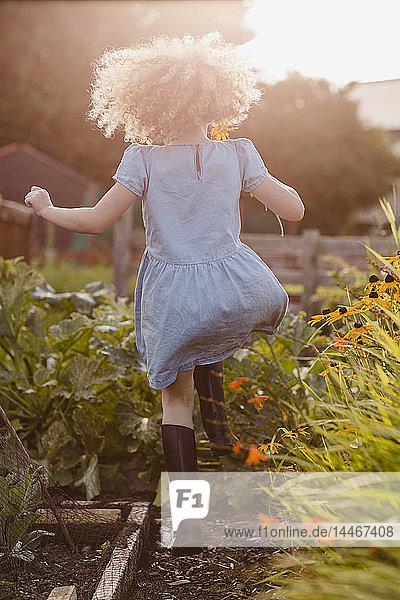 Rückenansicht eines glücklichen kleinen Mädchens  das im Garten herumspringt