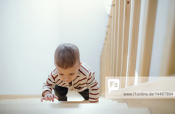 Toddler boy climbing up stairs at home