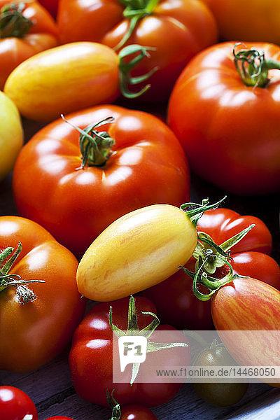 Verschiedene Tomatensorten  Nahaufnahme