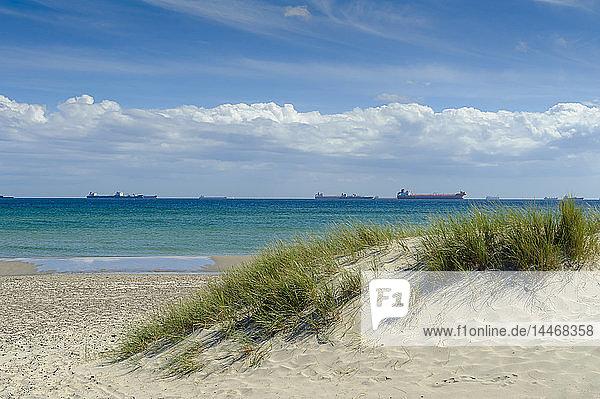 Dänemark  Jütland  Skagen  Grenen  Strand und Schiffe auf dem Meer