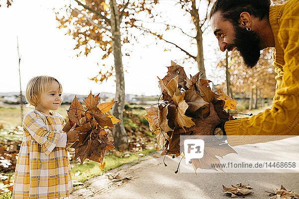 Vater und Tochter genießen im Herbst einen Vormittag im Park und halten Herbstblätter