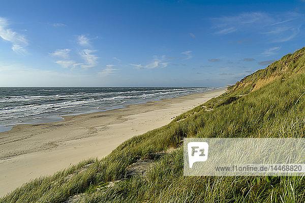 Dänemark  Jütland  Lokken  Dünenlandschaft und Nordsee