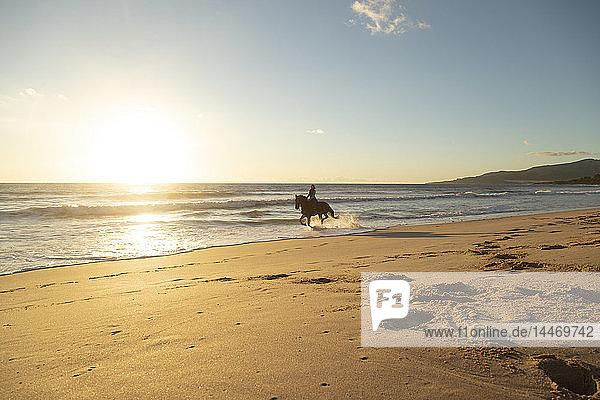 Spain  Tarifa  woman riding horse on the beach at sunset