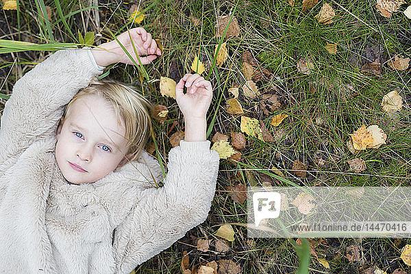Porträt eines blonden Mädchens  das im Herbst auf einer Wiese liegt  Draufsicht