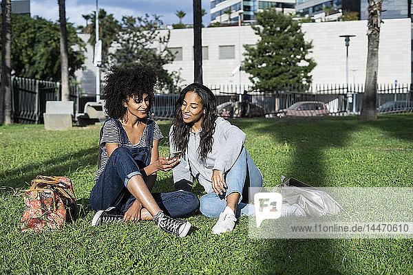 Girlfriends sitting in park  having fun  using smartphone