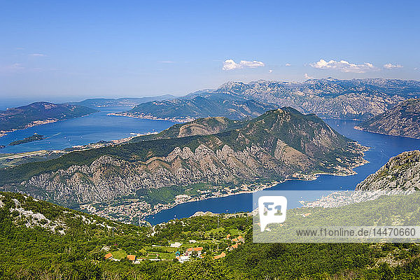 Montenegro  Bay of Kotor  near Kotor  Peninsula Vrmac