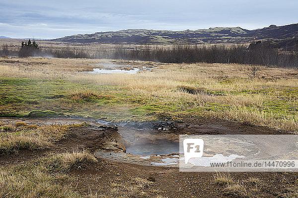 Eisland  Haukadalur-Tal  Geothermiestandort mit heisser Quelle  Geysir