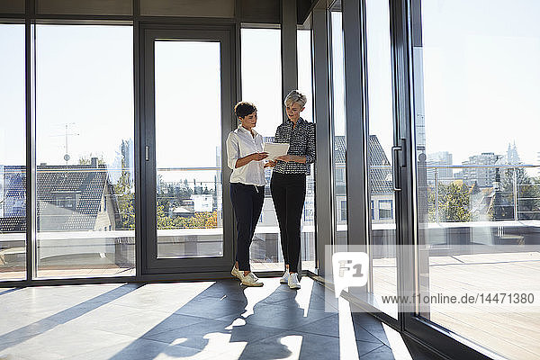 Two businesswomen discussing document at the window in bright office