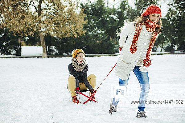 Zwei Freunde amüsieren sich im Schnee