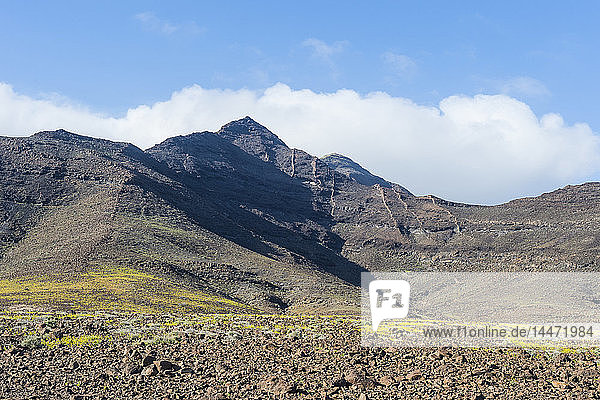 Spain  Canary Islands  Fuerteventura  mountainscape in the south of the island